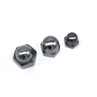 High Tensile Stainless Steel Ss304 /316 Decorative Hex Cap Nuts
